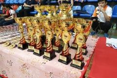 KL Wushu Championship 2019 - Trophies